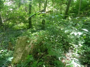 High Rock Cemetery - Headstones lost among the woods